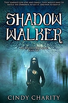 Shadow Walker (The Divided Star Series Book 2)